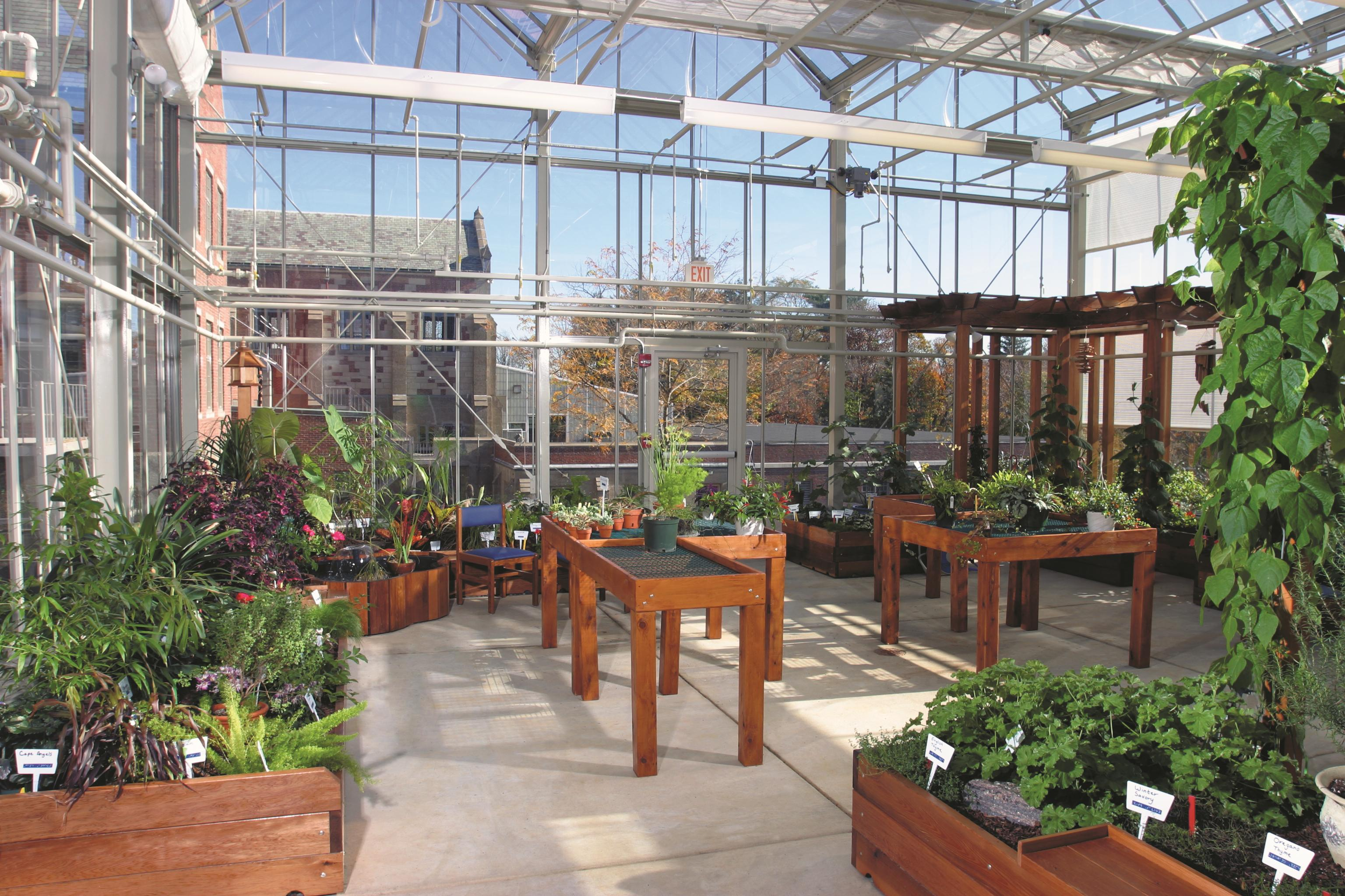 The greenhouse richardson - The Greenhouse Richardson 43